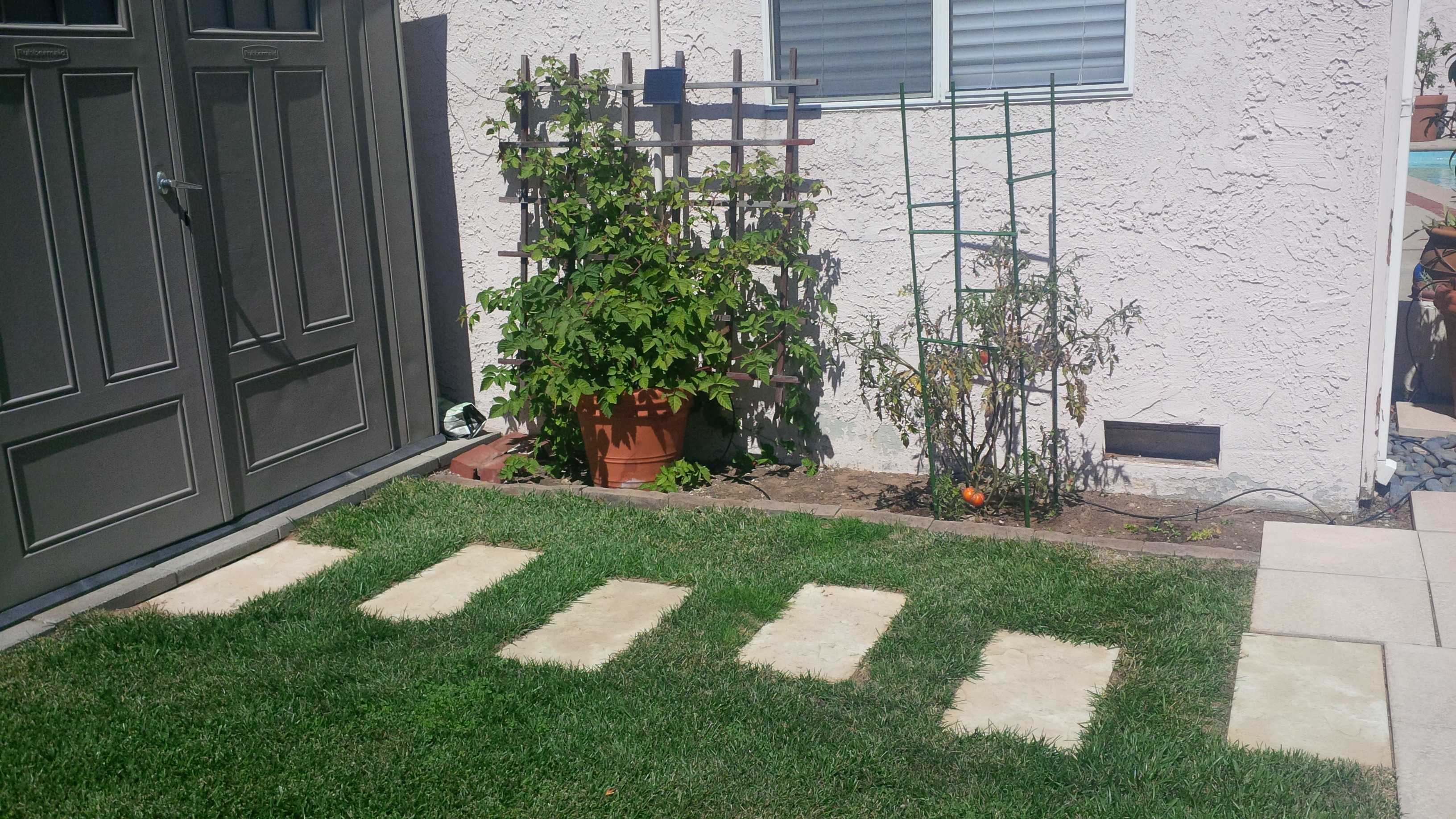 how to fix grass patches